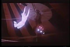 Två trapetskonstnärer som kopplar stänger i midair stock video