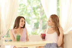 Två trevliga unga damer som dricker smoothien royaltyfria foton