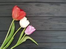 Två tulpan blommar den eleganta designen ett svart träställe för naturligt blom- för texttappning Arkivbild