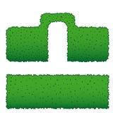 Två typer av häckar av gröna buskar Arkivfoto