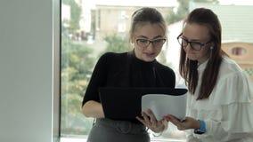Två unga affärsflickor med exponeringsglas som står på fönstret som diskuterar näringslivsutveckling stock video