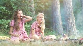 Två unga kvinnor i övre stil för stift som har gyckel på en picknick i parkera i solnedgången Sommar ferier, semester som är lyck lager videofilmer