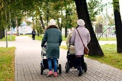Två unga mammor som flickvänner går med unga barn i sittvagnar för en höst, parkerar Kvinnor på en gå med ungarna, tävla Fotografering för Bildbyråer