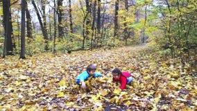 Två ungar som spelar med blad i skogen stock video
