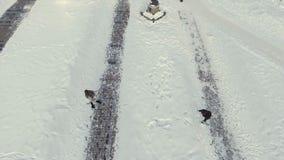 Två ungdomarspelar kastar snöboll på vinterbanan lager videofilmer