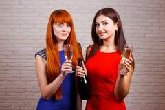 Två vänner som festar och rostar drinkar Lyckliga toas för unga kvinnor Arkivbilder