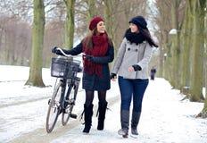 Två vänner som tycker om en gå i en vinter, parkerar Fotografering för Bildbyråer