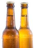 Två våta flaskor av öl på white Royaltyfri Foto