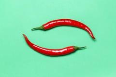 Två varma röda Chili Peppers Form Yin Yang ett symbol på grön bakgrund Lekmanna- lägenhet Royaltyfri Fotografi