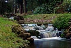 Två vattenfall och träbro Royaltyfria Foton