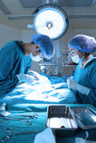 Två veterinär- kirurger i fungeringsrum Arkivbilder
