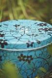 Två vigselringar av vit guld på en blå metall boxas i grönt gräs Royaltyfri Bild