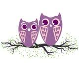 Två violetta ugglor som sitter på trädfilialen Vektorillustration av tecknad filmugglor i pastellfärgade färger Familj och romans Royaltyfria Foton