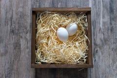 Två vita ägg i träask på grå träbakgrund Påskferiebegrepp Lantgårdbakgrund Ägg bygga bo in Arkivbilder