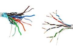 Två vridna kopparkablar för parUTP nätverk som mot varandra står, en med individuell aluminium folie som skyddar, vit backgr Royaltyfri Bild