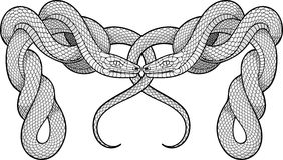 Två vridna ormar dekorativt element royaltyfri illustrationer