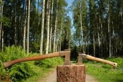 Två yxor i skog Royaltyfria Foton