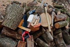 Två yxor i stubbar med wood bakgrund för funktionsdugliga hjälpmedel Arkivbild