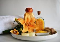 Tvål-, handduk- och blommasnowdrops Royaltyfria Foton