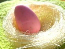 Tvål i form av ägg i redet Fotografering för Bildbyråer