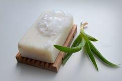 Tvål med aloe Arkivbilder