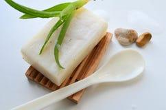 Tvål med aloe Fotografering för Bildbyråer