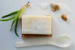 Tvål med aloe Royaltyfria Bilder