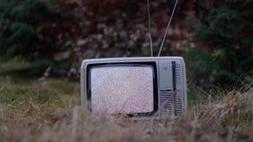 TV żadny sygnał w trawie zbiory wideo