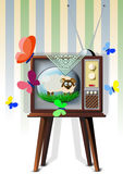 TV με το αρνί Στοκ Φωτογραφία