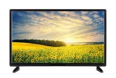 TV ad alta definizione moderna con paesaggio con i girasoli sul Fotografia Stock Libera da Diritti