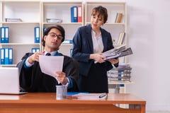 Tv? advokater som arbetar i kontoret royaltyfri foto