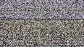 TV analógica real Noize TV ninguna señal, ruido blanco almacen de metraje de vídeo