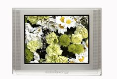 TV And White Flowers Stock Photos