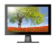 TV con il campo rosso del papavero Fotografia Stock Libera da Diritti