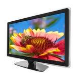 TV con la flor Fotografía de archivo