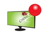 TV 3d cricket. TV with 3d Cricket Ball concept full illustration work colours red light green blak Stock Photo