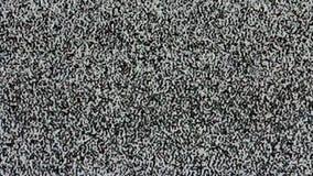 TV ekran żadny sygnał, statyczny hałas i TV statyczna pełnia parawanowy (pętla) HD zbiory