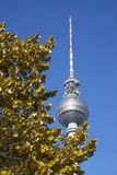 tv för berlin fernsehturmtorn Arkivfoto