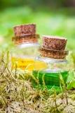 Två flaskor av nödvändig olja eller magisk dryck på mossa Arkivfoton