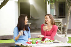 Två flickvänner som sitter yttersidan som har lunch Arkivbilder