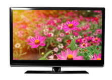 Tv with flowers Stock Photo
