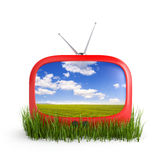Tv in grass Royalty Free Stock Images