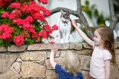 Två gulliga lilla systrar och en katt Fotografering för Bildbyråer