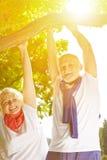 Två höga personer som gör handtag-UPS på ett träd Fotografering för Bildbyråer