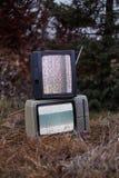 TV ingen signal i gräs royaltyfri bild