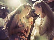 två kvinnor Fotografering för Bildbyråer