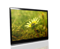 Tv monitor. Over white surface with flower Stock Images