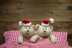 Två nallebjörnar på julhelgdagsafton: idé för ett roligt hälsningkort Royaltyfria Bilder