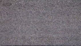 TV no signal. White Noize. Real Analog TV Noize. There is no signal, the TV reception is poor. Low signal level from analog antenna. Noise on the liquid-crystal stock video