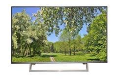 TV o monitor ad alta definizione moderna con il paesaggio della molla su Sc Immagine Stock Libera da Diritti